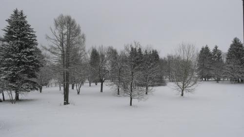 Ėriškių parkas žiemą